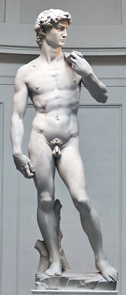 Picture of Michaelangelo's David